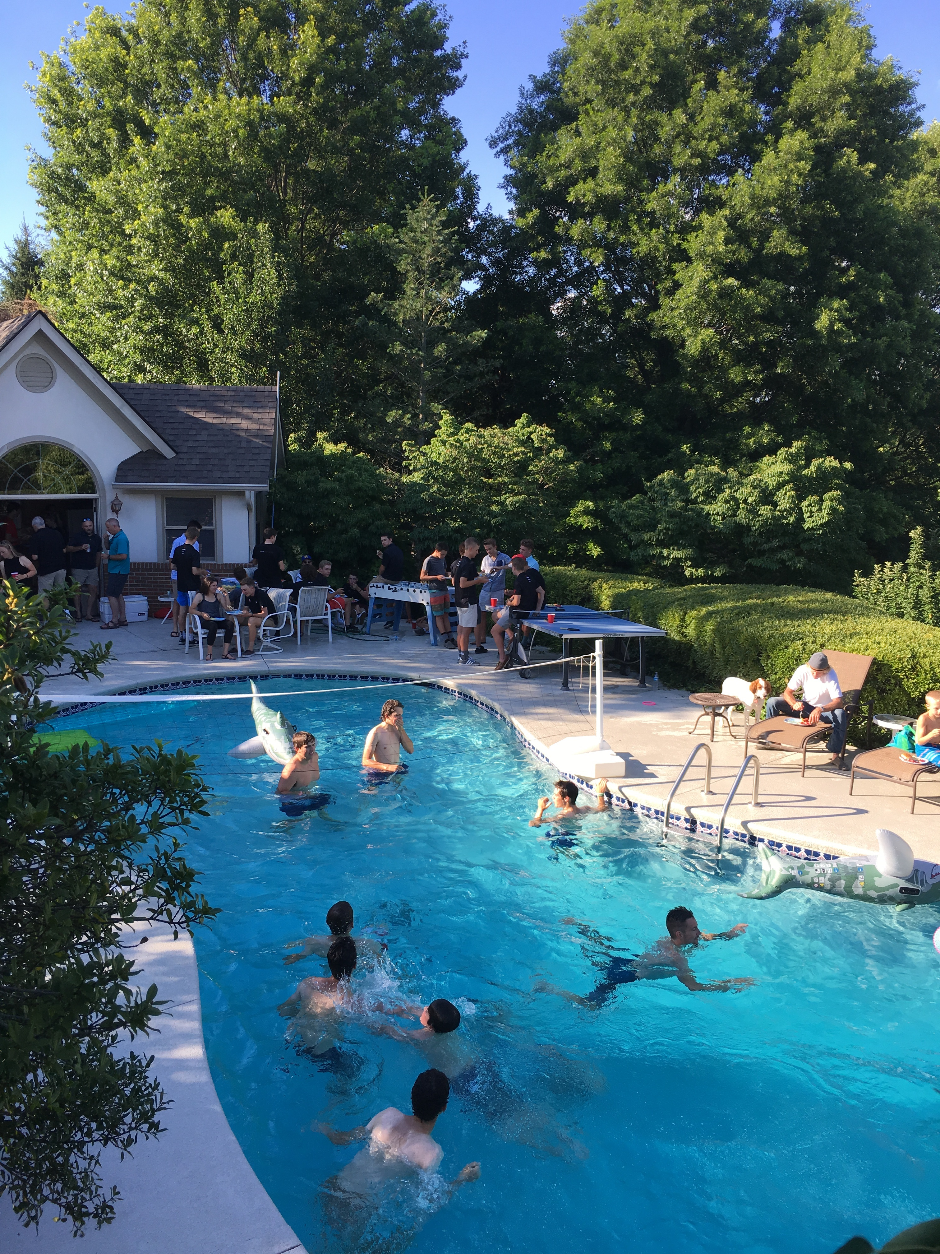 Kids Enjoy The Pool At Dr Grossfelds Party On June 28 2016 Louisville