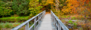 Where to Bike, Run, Hike, or Play Sports in Louisville, Kentucky